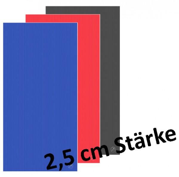 PROFI-MATTEN 200x100x2,5 cm